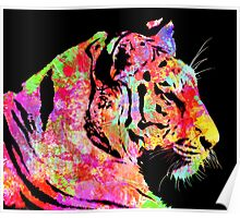 Abstract tiger with lots of colour Poster
