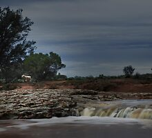 Lone Sheep Falls by Pene Stevens