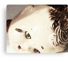 Diptera doll Canvas Print