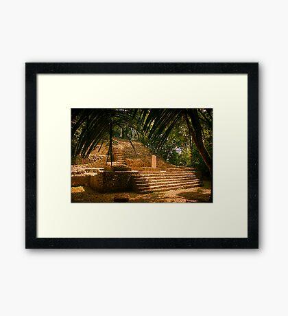 Mayan Temple - Lamanai, Belize Framed Print