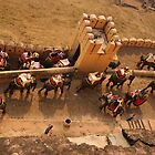 Elephant train descending from Amber Fort, Jaipur by Christopher Cullen