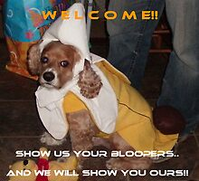 Bloopers welcome banner by linmarie