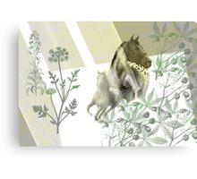 Equine & Colours. Canvas Print
