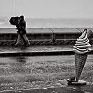 To stroll along the prom prom prom by clickinhistory