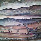 'Afon Mawddach, Wales' by Martin Williamson (©cobbybrook)