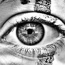 The eye of the beholder  by Morgan Koch