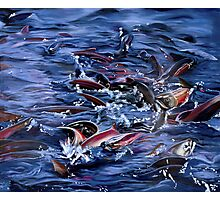 """""""Spawning"""" - oil painting of salmon spawning Photographic Print"""