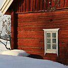 Norwegian Barn by AmyKippernes