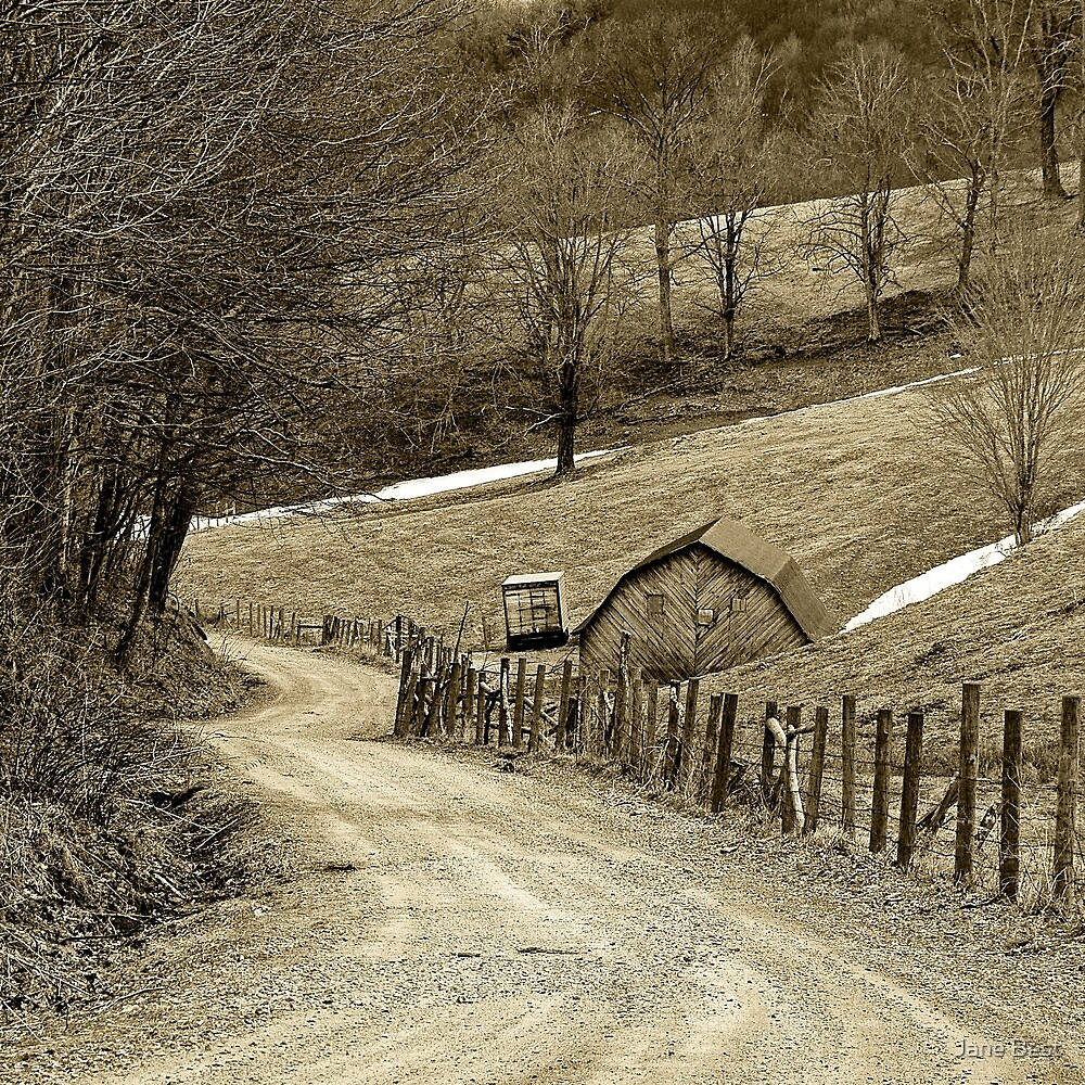 Along a Country Road by Jane Best