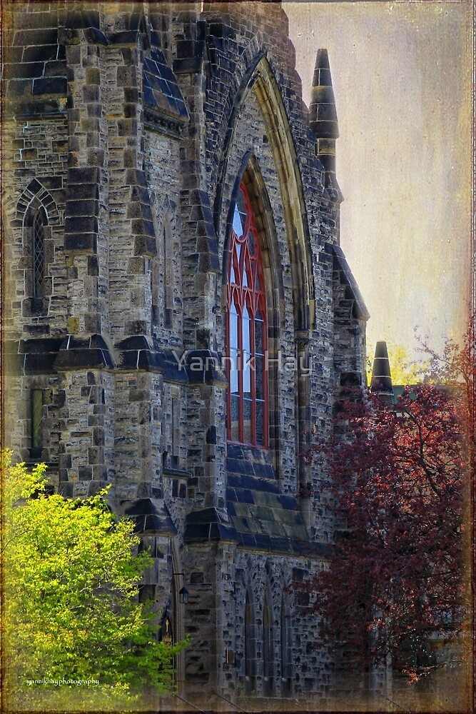 Christ Church Cathedral Anglican by Yannik Hay