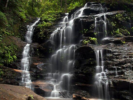 Sylvia Falls by Malcolm Katon