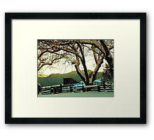 Evening Settles In Framed Print