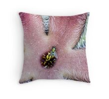 Aasblom - Stapelia grandiflora Throw Pillow