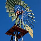 Old Windmill (Desert Queen Ranch, Joshua Tree National Park, California) by Brendon Perkins