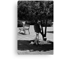 Sweet Is The Shade Canvas Print