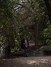 Lyttleton (christchurch), NZ walkway by Odille Esmonde-Morgan