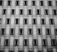 Windows by XD  Photography