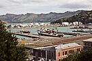 Lyttleton Harbour from Sumner Terrace by Odille Esmonde-Morgan