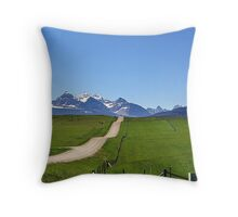 Dippy Road Throw Pillow