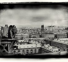 Notre Dame Gargoyle by DavidDArnold