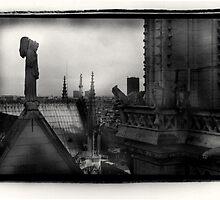 Notre Dame Angel by DavidDArnold
