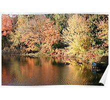 Foliage on pond Poster