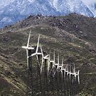 Windmills from Palm Springs by Viktor  Savchenko
