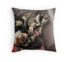 Max & Molly Throw Pillow