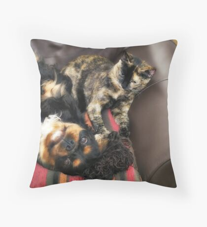 Max & Molly Throw Pillow
