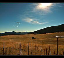 Elk Meadow by DavidDArnold