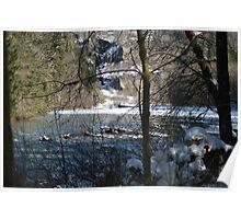 Hemple Creek Picnic Area in Winter Poster