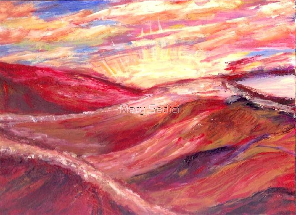 Sunset in the Desert by Mary Sedici