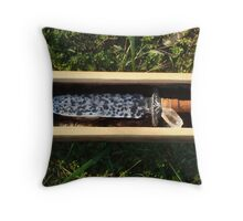 Arkansas, The Bowie Knife State Throw Pillow