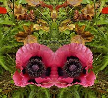 Mirrored Poppies by lezvee