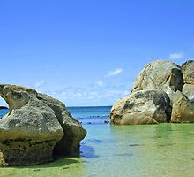 The boulders beach by jozi1