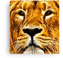 A Proud And Intense Stare ~ Fractal ~ Canvas Print