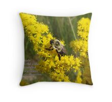 His wounderful works Throw Pillow
