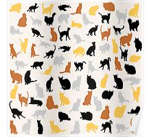 Colorful Cats Poster