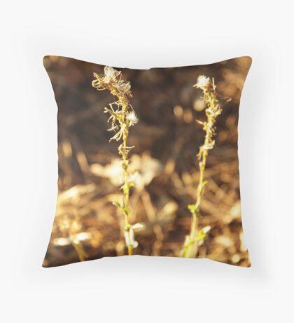 Dry plant Throw Pillow