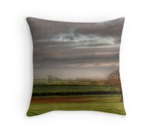 lonley tree in winter Throw Pillow