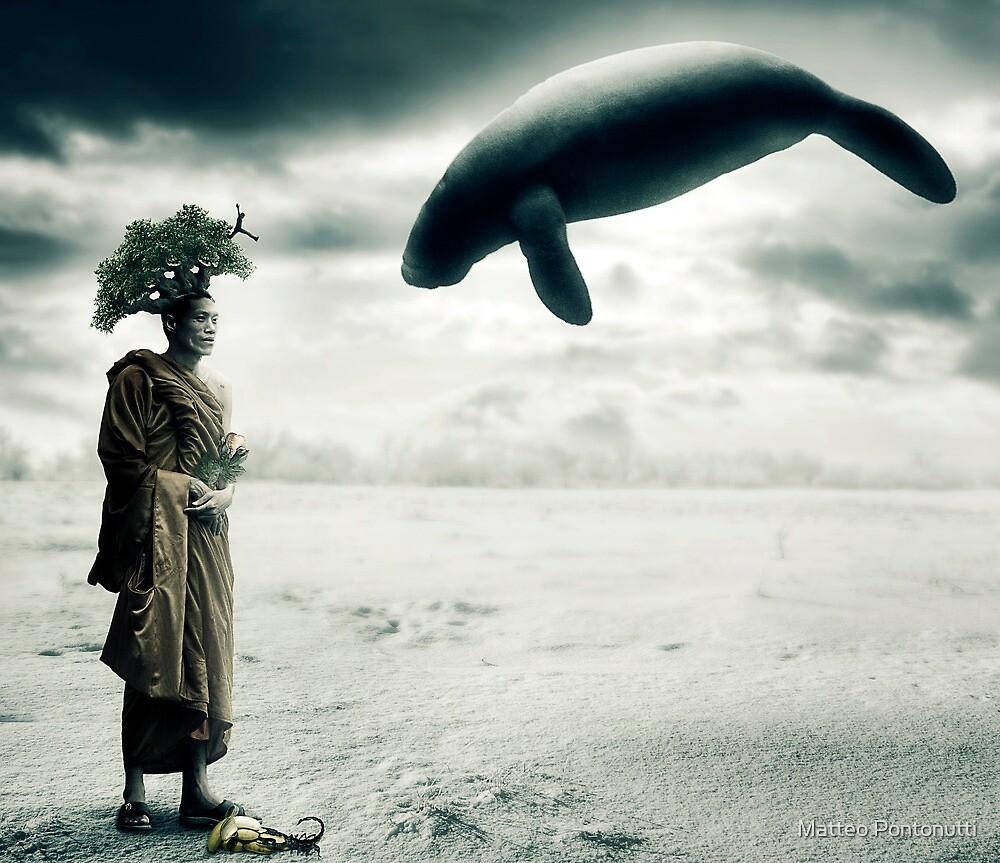 My Reality by Matteo Pontonutti