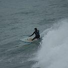 Surfer Dude by Carol Field