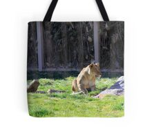 The Stalk... Tote Bag