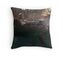 waters edge... Throw Pillow