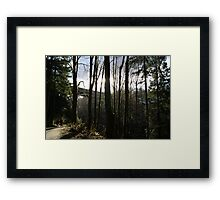 Nature A-Glow Framed Print