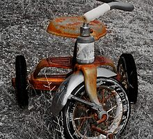 Tricycle by Jeffrey  Sinnock