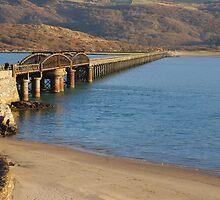 Mawddach Estuary Bridge No1 by StephenRB