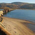 Mawddach Estuary Bridge No2 by StephenRB