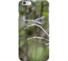 Dragonfly sitting by a pond iPhone Case/Skin