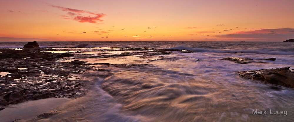 The Flow by Mark  Lucey